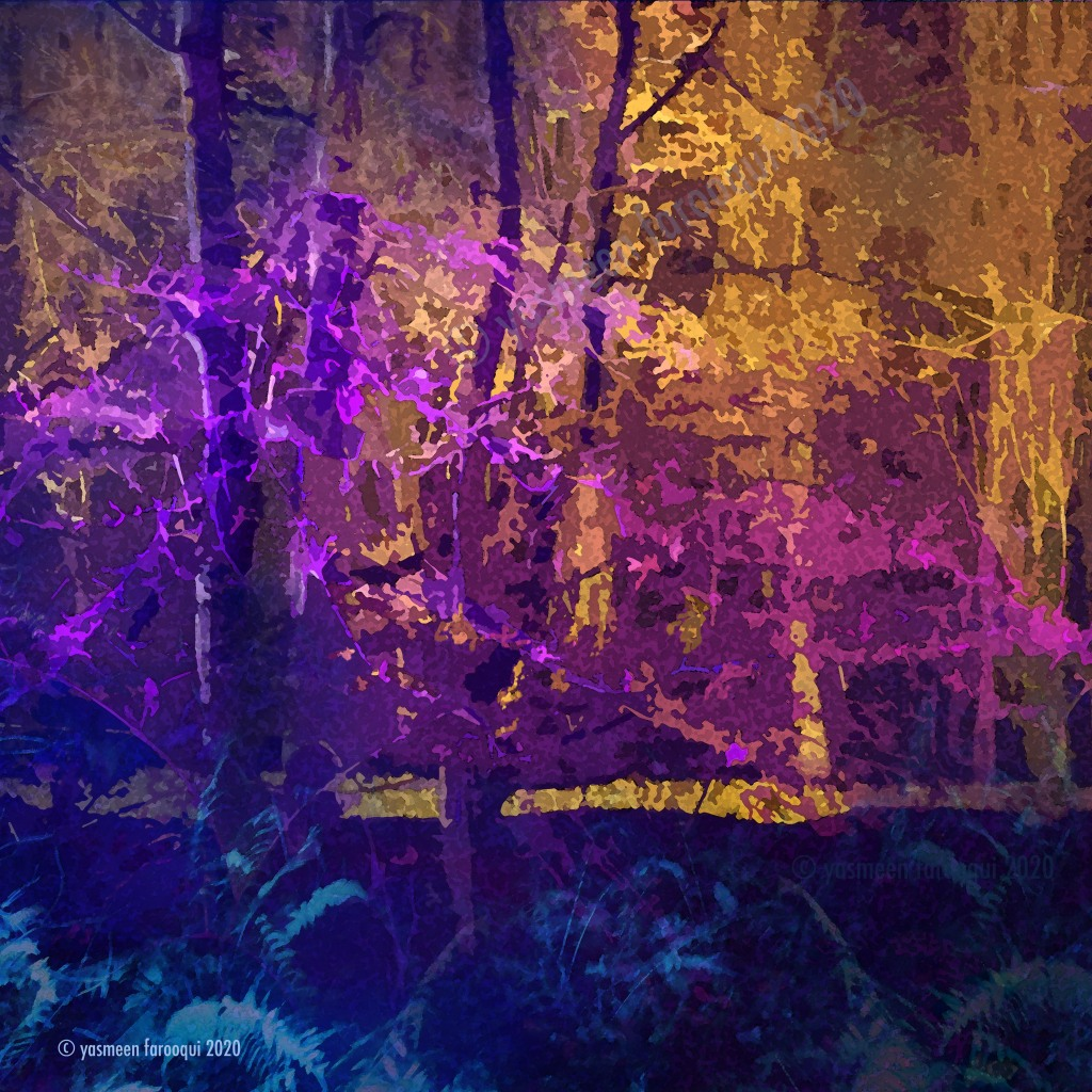 Digital collâge, trees lit up at night, a walk through a forest at night.